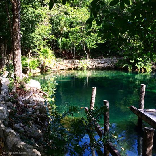 miriamdema cenote 2015