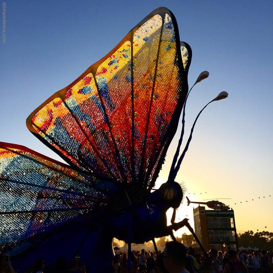 miriamdema coachella butterfly 2015