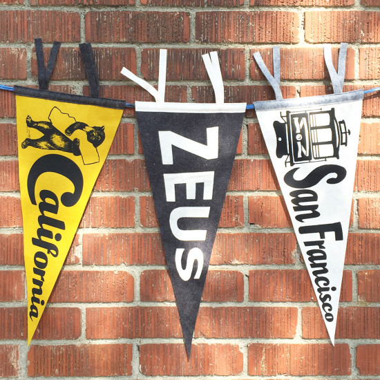 miriamdema custom pennant with pennants